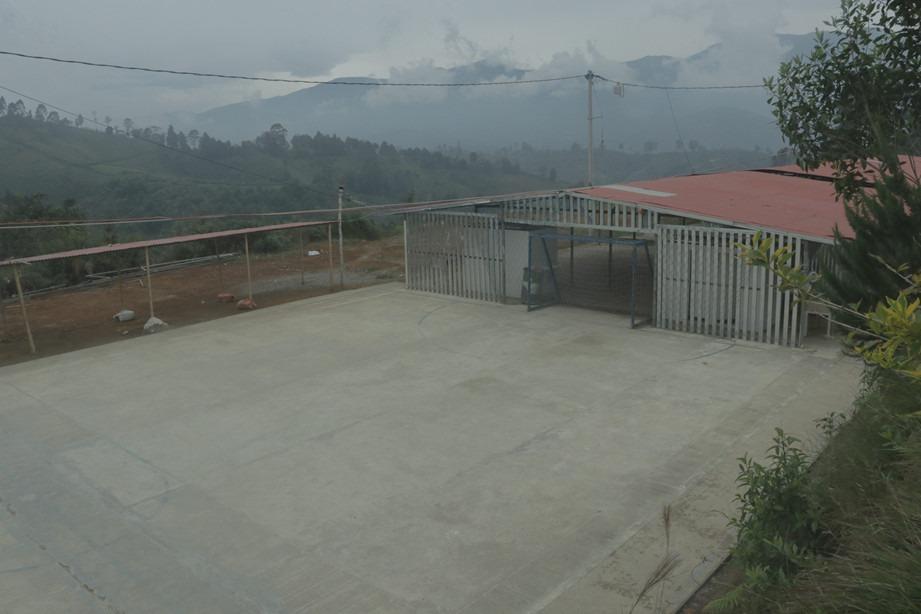 Los monos cancha Aguacate hass, porcicultura, piscicultura y ganadería son las apuestas productivas del AETCR de Los Monos, en el Cauca